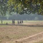 Cricket auf dem Land